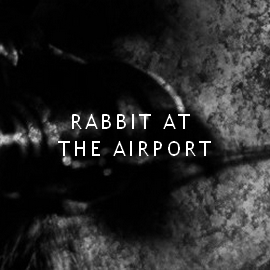 rabbitattheairport_5